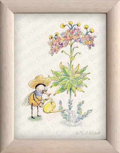 Gärtnerfliege